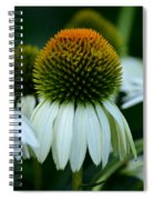 Echinacea Gold II Spiral Notebook