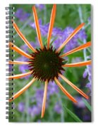 Echinacea Mango Spiral Notebook