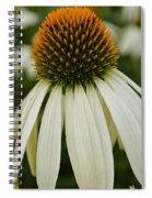 Echinacea Portrait Spiral Notebook