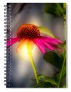 Echinacea Sunrise Spiral Notebook