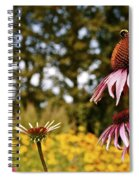 Echinacea With Bee Spiral Notebook