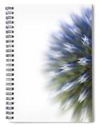Echinops  Spiral Notebook