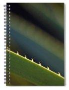 Edge Of A Sotol Leaf Spiral Notebook