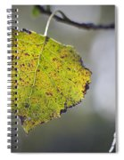Edge Of Change Spiral Notebook