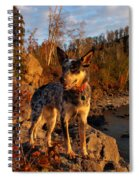 Edge Of Glory Spiral Notebook