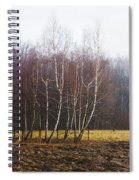 Edge Of The Forest Spiral Notebook