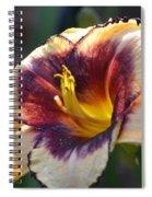 Edged In Crimson - Lily Spiral Notebook
