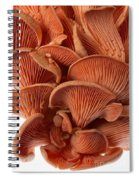 Edible Fungi 2 Spiral Notebook