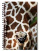 Eeekkk Spiral Notebook