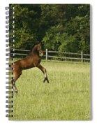 Eek   Whazzat? Spiral Notebook