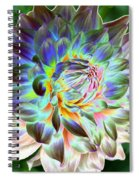 Eerily Beauty Spiral Notebook