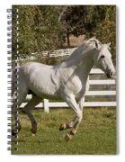 Effortless Gait Spiral Notebook