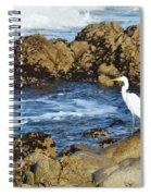 Egert Spiral Notebook