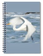 Egert In Flight Detail Spiral Notebook