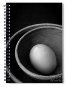 Egg Open Edition Spiral Notebook