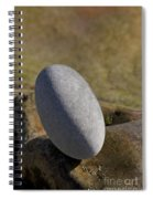 Egg-shaped Stone Spiral Notebook