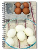 Eggs Boiled And Raw Spiral Notebook