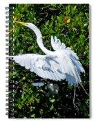 Egret 1 Spiral Notebook
