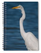 Egret 148 Spiral Notebook