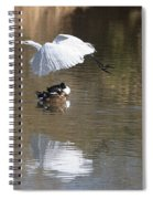 Egret And Geese At Gilbert  Riparian Preserve Spiral Notebook