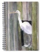 Egret At John's Pass Spiral Notebook