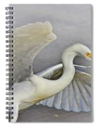 Egret Grace At The Beach Spiral Notebook