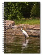 Egret In Central Park Spiral Notebook