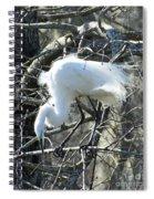Egret In Lake Martin Swamp Louisiana Spiral Notebook