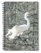 Egret Lake Martin Louisiana Rookery Spiral Notebook