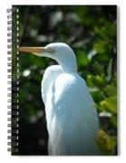 Egret Of Sanibel 9 Spiral Notebook