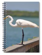Egret On A Pier Spiral Notebook