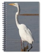 Egret Out Fishing Spiral Notebook