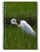 Egret Preen Spiral Notebook