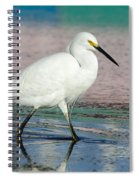Egret Reflections- 2  Spiral Notebook