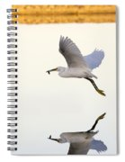 Egret With Fish- Reflected Spiral Notebook