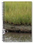 Egret's Catch Spiral Notebook