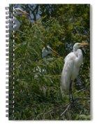 Egrets In Tree Spiral Notebook