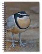Egyptian Plover Spiral Notebook