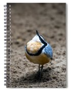 Egyptian Plover Spiral Notebook