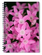 Egyptian Star Flowers Or Penta Spiral Notebook