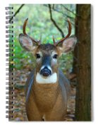 Eight Point Face To Face Spiral Notebook