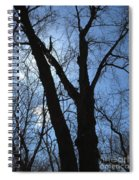 Elder Maple Silhouette Spiral Notebook