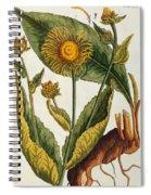 Elecampane Spiral Notebook