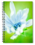 Electric Lady Spiral Notebook