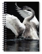 Elegance In Motion 2 Spiral Notebook