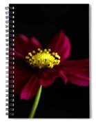Elegance Of A Cosmo Spiral Notebook
