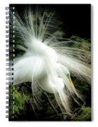 Elegance Of Creation Spiral Notebook