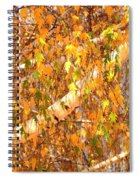 Elegant Autumn Branches Spiral Notebook