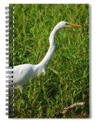 Elegant Hunter Spiral Notebook