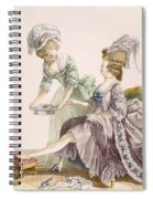 Elegant Lady Having Her Feet Washed Spiral Notebook